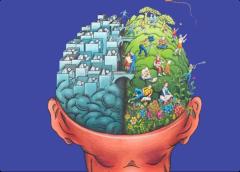 右脑照相记忆功能--隐藏了5000年的人类大